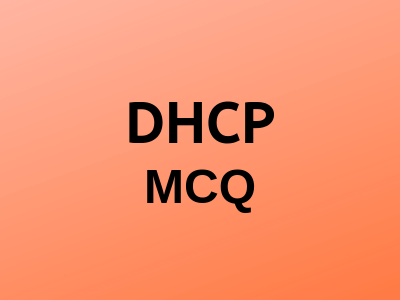 dhcp-mcq
