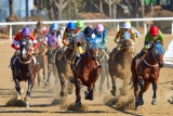 Horse Racing Rules Every Beginner Bettor Needs to Know – 2021 Guide